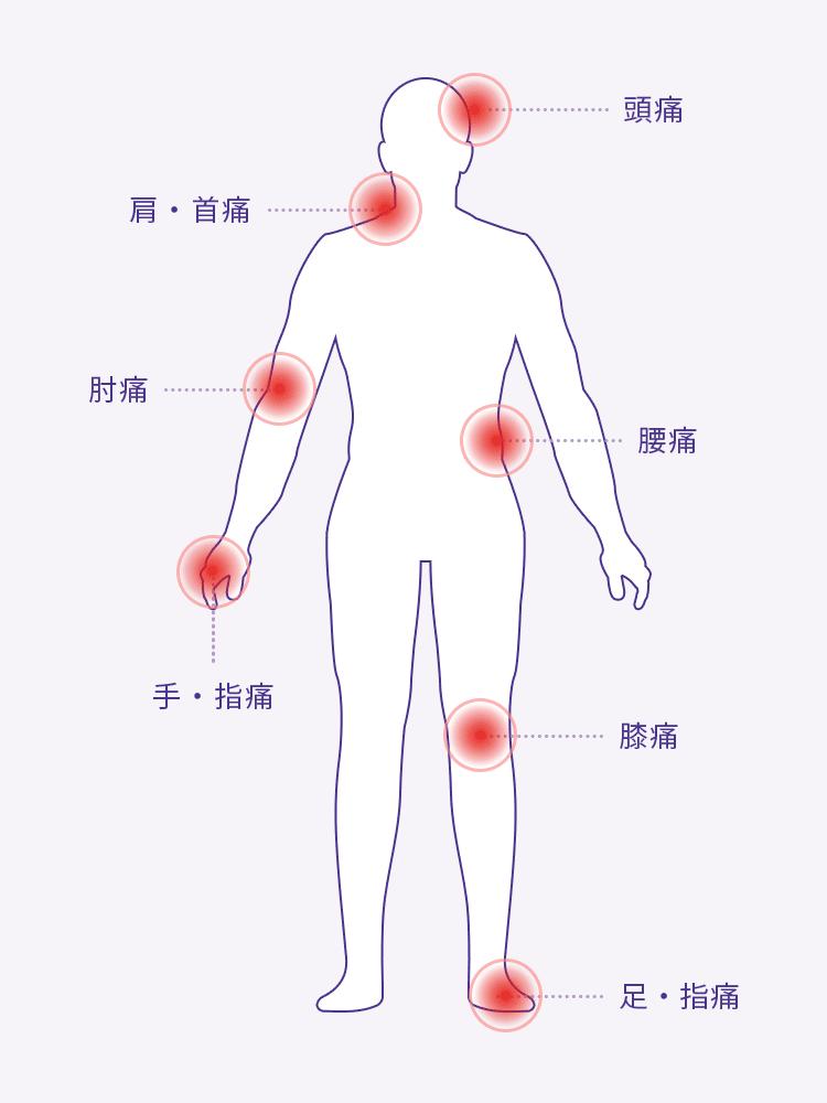 当院の診療例(患者様の主な症例)